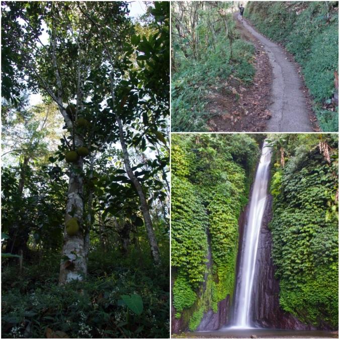 Munduk Waterfalls