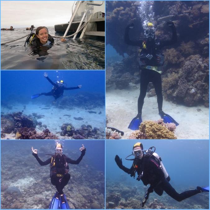 DiversFINAL